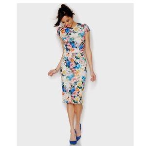 Betsey Johnson   Rose Print Scuba Dress